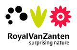 Royal van Zanten  - Internationale veredelaar van snijbloemen